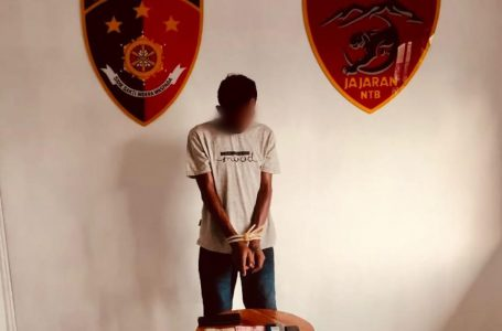 Curi Hp Tamu Hotel, Residivis Dibekuk Saat Hendak Kabur ke Surabaya