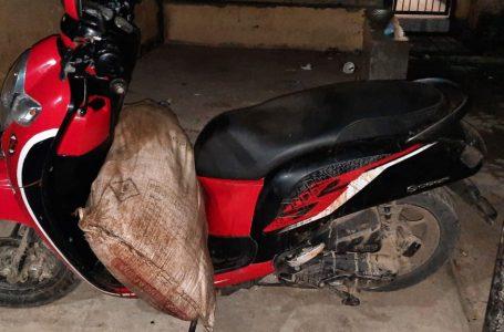 Polisi Ungkap Modus Pencurian Kerbau di Bima, Diracun Lalu Dipotong
