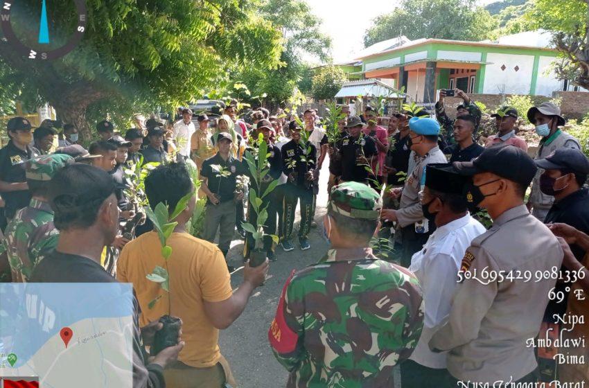 Pemerintah Kecamatan Ambalawi Tanam Ratusan Pohon