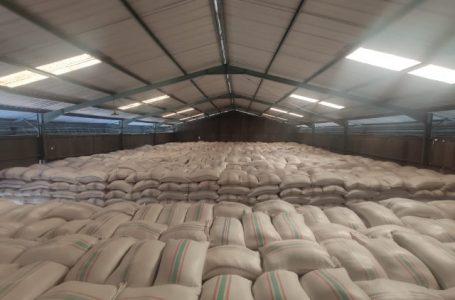 Bulog Sumbawa Kirim 2500 Ton Beras ke NTT, Tertinggi dalam 5 Kali Pengiriman