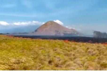 Hamparan Ilalang di Pulau Kenawa Terbakar, Diduga Ulah Pemancing